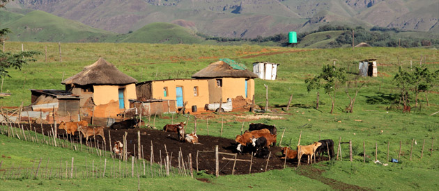 Bhisho, in the Eastern Cape, South Africa